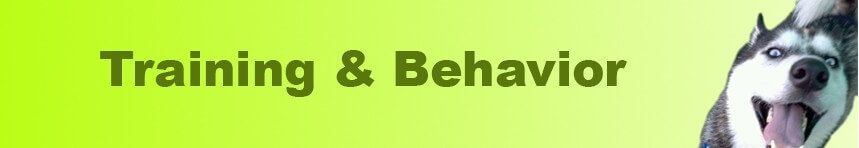 Training & Behavior